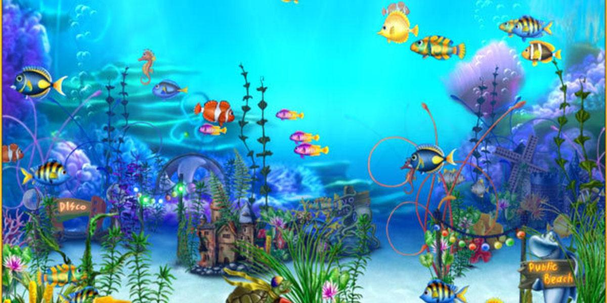 C mo llevarte bien con acuario for Horoscopo para acuario